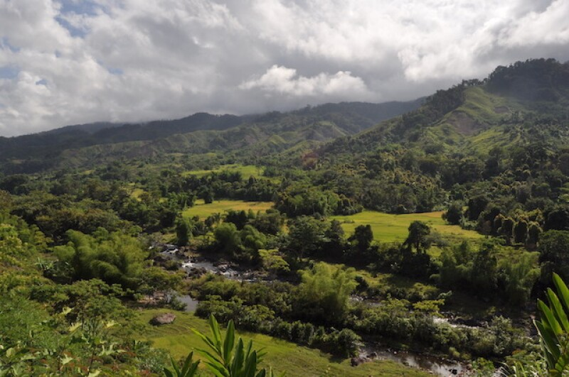 While visiting her dream destination of Madagascar, Elizabeth wanted to accomplish three things. One of these things was to participate in a seven-day hike through remote rainforests (image courtesy Elizabeth Hamilton).