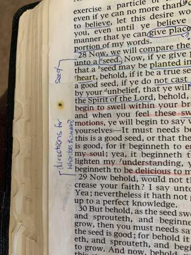 Poppyseed taped into Tammy's scriptures